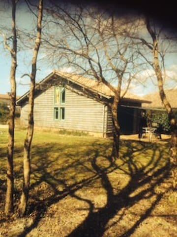 gite sur emplacement exceptionnel - Lit-et-Mixe - House