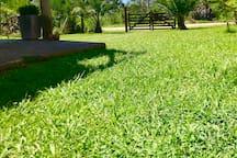 Este es el jardín al frente que tiene Hus