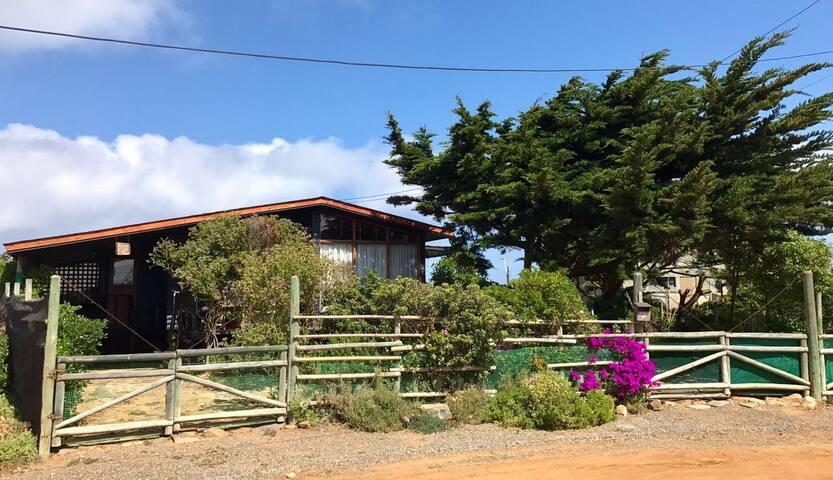 Pichidangui, Cabaña remodelada / amplios jardines