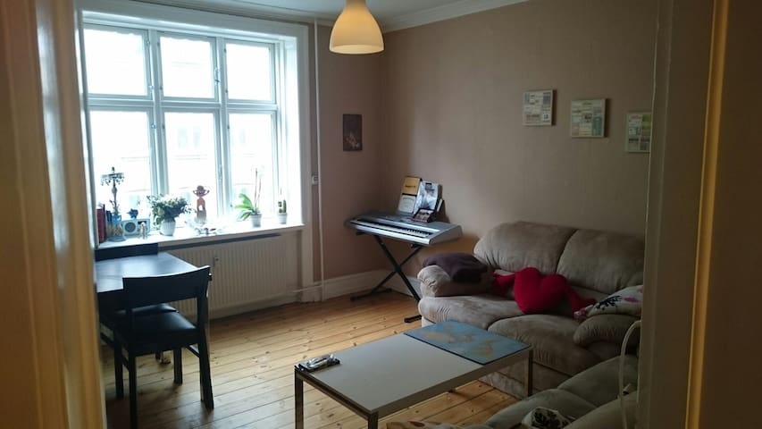 Little apartment, cosy couches