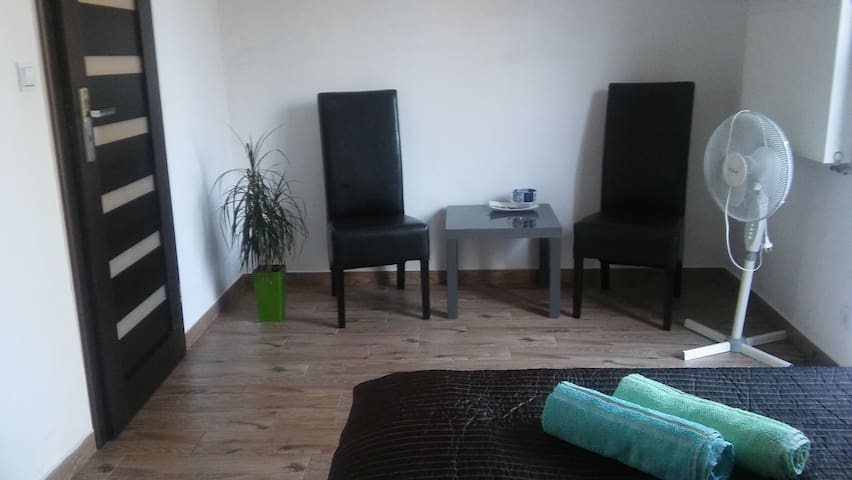 Room with the independent entry, close the airport - Raszyn - Apartament