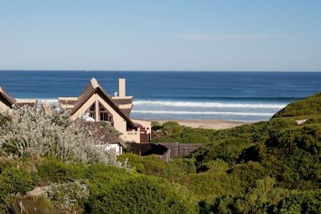 Dolphin @ Sandown - Cape St Francis - Cape Saint Francis