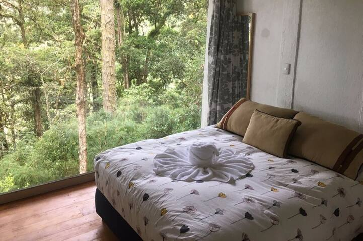 The Cloud Forest Bungalow
