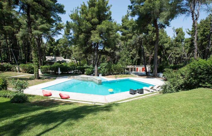 Villa Irini in Sani with garden and pool, by JJ Hospitality