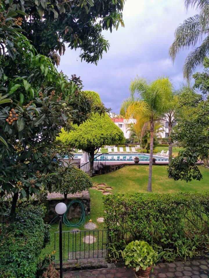 Habitación Turquesa. Alberca y áreas verdes.