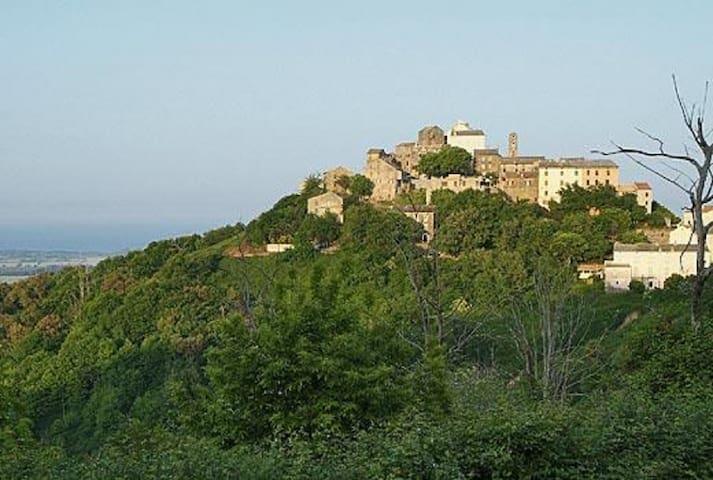 Belle maison de village avec vue sur la mer. - Castellare-Di-Casinca - 獨棟