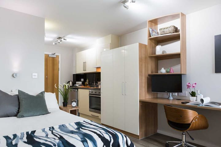 Studio Apartment in London Southwark with Roof Terrace Access