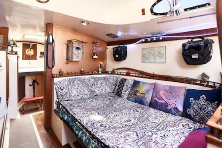 Solo-sailed Circumnavigator (vegan) ...