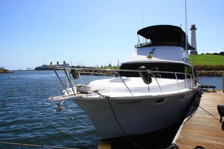 Dockside Boat & Bed, Sea Peepers
