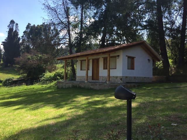 Cabaña campestre de pino nueva y acogedora - Paipa - Cabaña