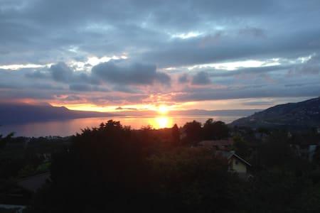 Superb apt with light, lake view & indoor parking - Saint-Légier-La Chiésaz