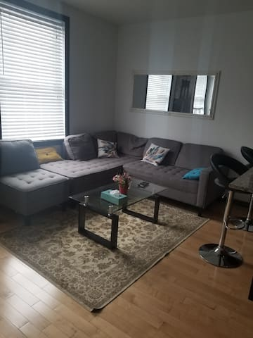 Entire 2 bedroom Appt/Heart of Downtown, Ottawa T4