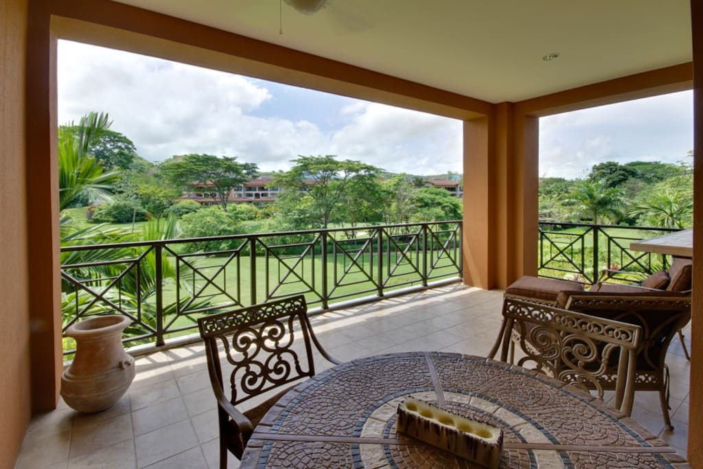 Deck,Porch,Balcony,Palm Tree,Tree