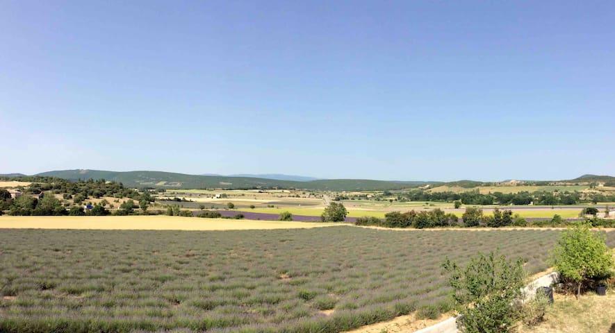 Studio  vue dégagée sur les champs lavande.