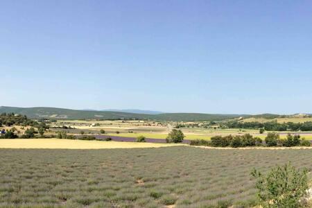 Studio vue sur les  lavandes aux portes du Luberon