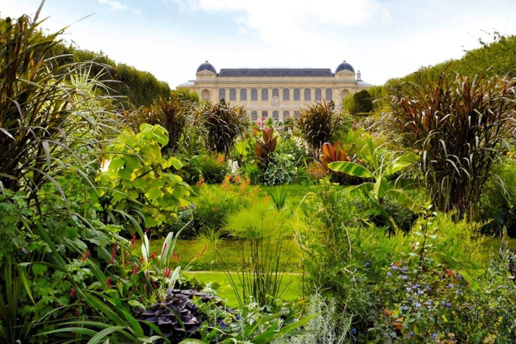 Jardin des plantes - 3 minutes away