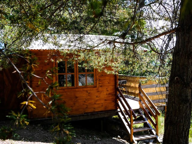 Les Cabanes de La Vigière (Amé) - Sauze - Blockhütte