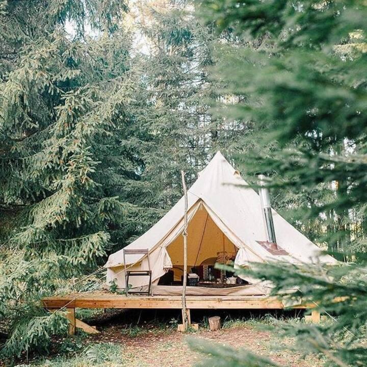 Ark Glamping: genieten in luxe in de natuur