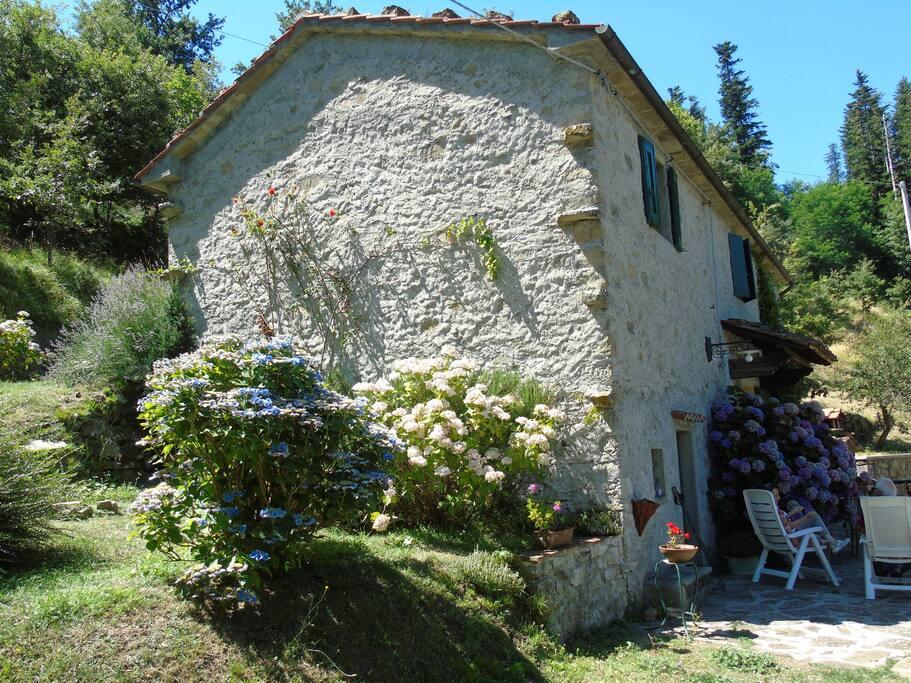 """""""La Casa del Monte"""""""