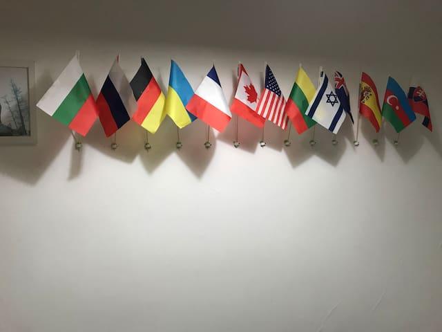 Наши гости!  Болгария, Россия, Германия, Украина, Франция, Канада, США,Литва,Израиль, Австралия,Испания, Азербайджан,Словакия, Латвия,Мексика,Чехия. К сожалению, отсутствуют флаги следующих гостей: Бельгия, Белоруссия, Грузия, Гватемала, Нидерланды.