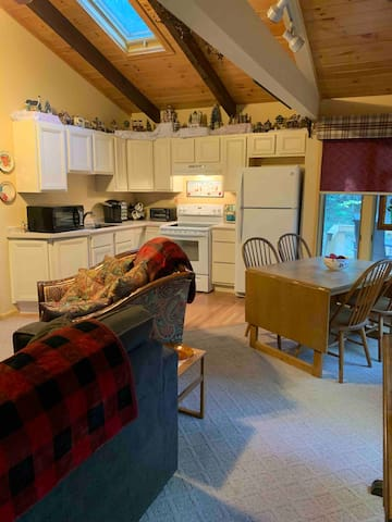 Cozy Home Near Skiing, Outlets, Theme Parks & More