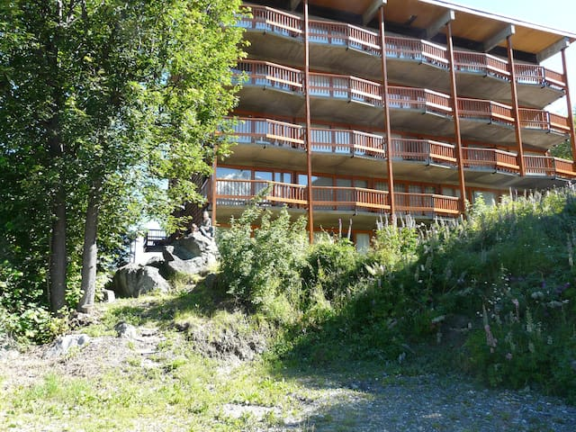 37 m² Large lounge facing south (44) - Peisey-Nancroix - Apartament
