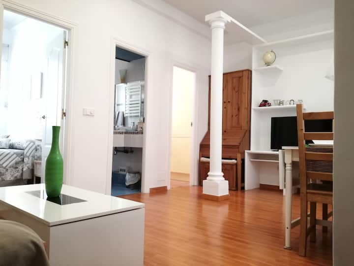 Nice apartment close to Retiro Park and Atocha Sta