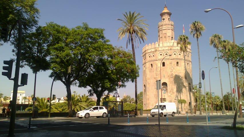 Catedral de sevilla ideal ubicacion