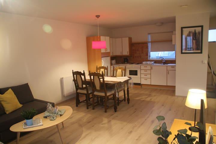 Cozy apartment in Reykjavík & Free Parking
