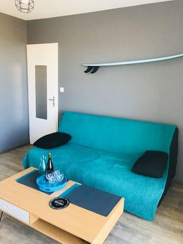 la pièce de vie : le salon canapé convertible / Table Basse / TV accès direct à la terrasse