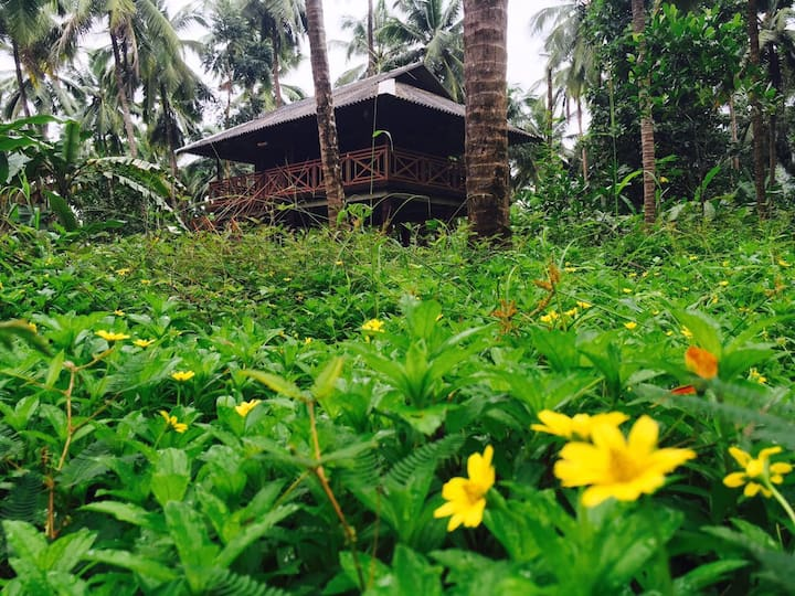 Rejuvenate yourself at Rahut Tree House