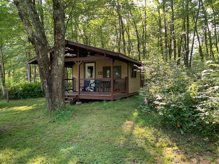 Beautiful Little cabin on 5 acres at Bethel Woods.
