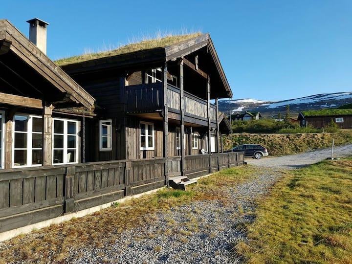 Big familycabin with fantastic view,  Høgevarde