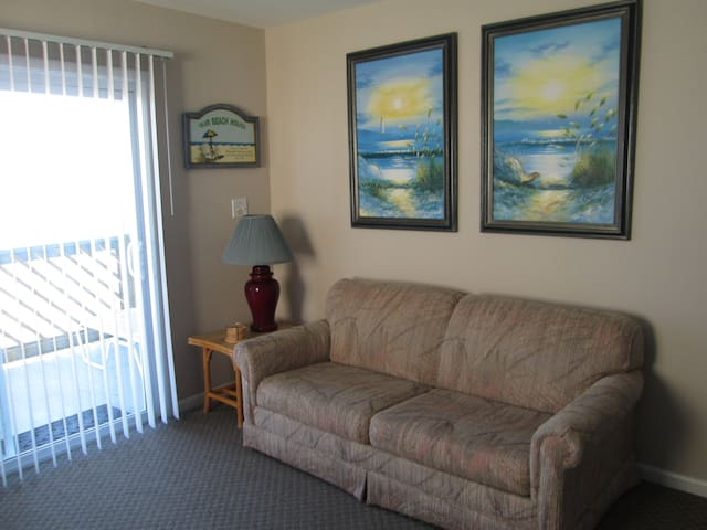 Pet friendly, Ocean front (2A) - Carolina Beach - Byt