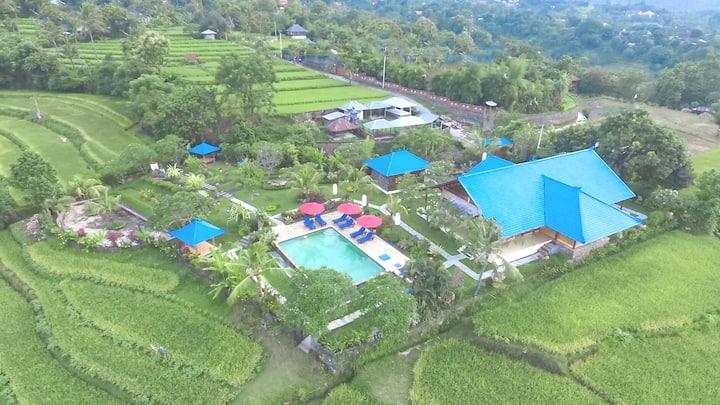 Three bedrooms Villa with sea view in North Bali