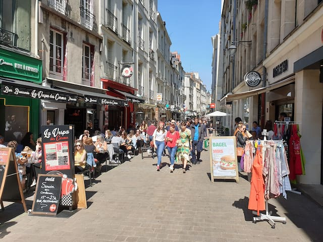 STUDIO IN THE HEART OF NANTES (pedestrian street)