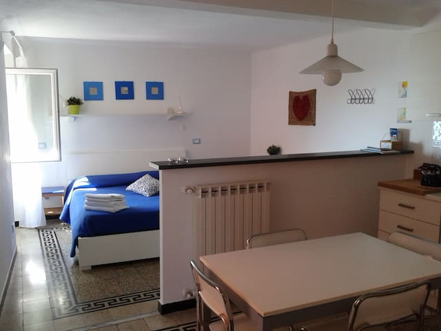 BOLLE BLU: delightful, romantic apartment! - Manarola - Appartement