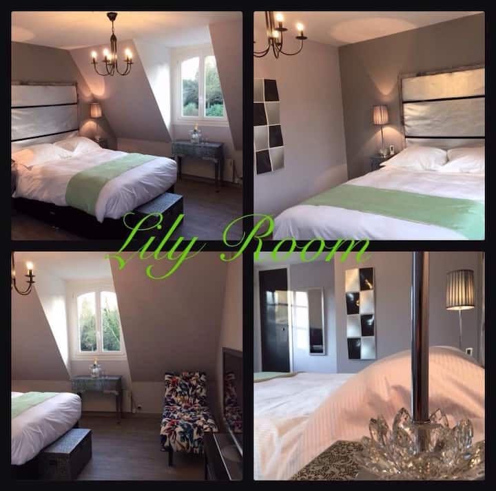 No:16 Chambres D'Hotes (Boutique Hotel) Lily Room