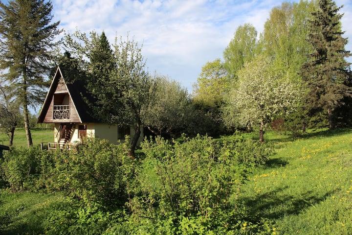 Summer cottage with sauna