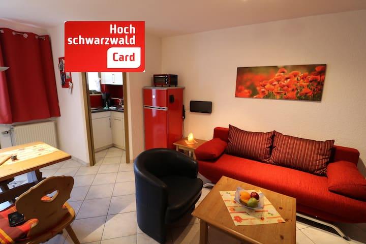 Ferienwohnung/App. für 4 Gäste mit 40m² in Todtnau- Todtnauberg (120387)