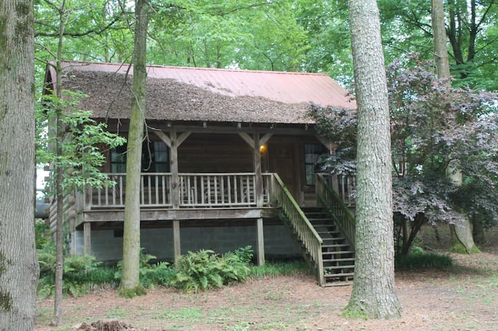 The Bears Den- A Laid Back Cabin
