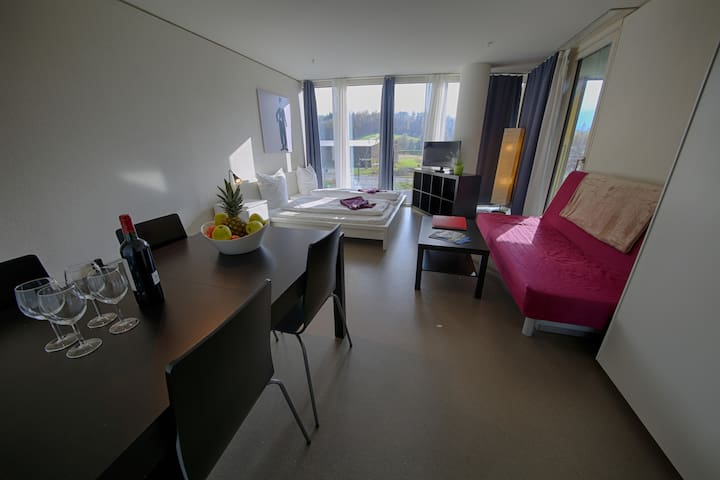 Comfortable 1.5 room Apartment Museggmauer III