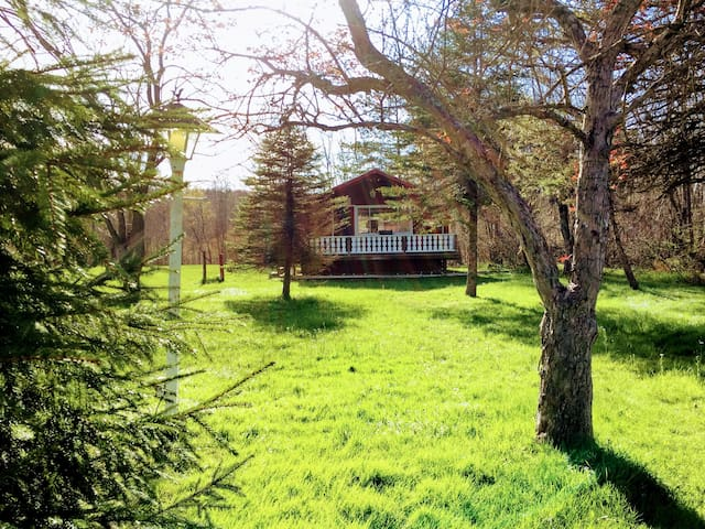 Charming Cabin At The Edge Of Town - Jamestown - Hytte