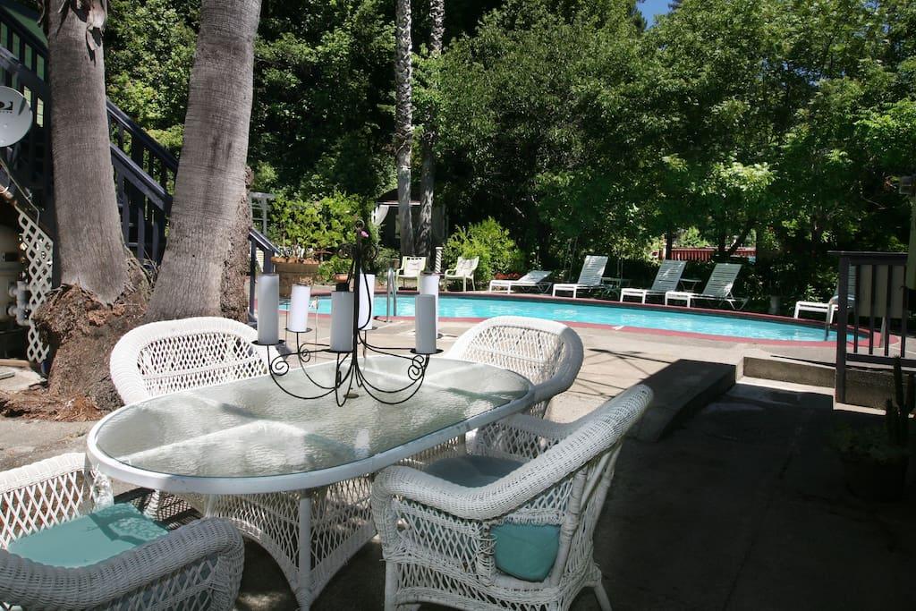 Backyard with cool pool