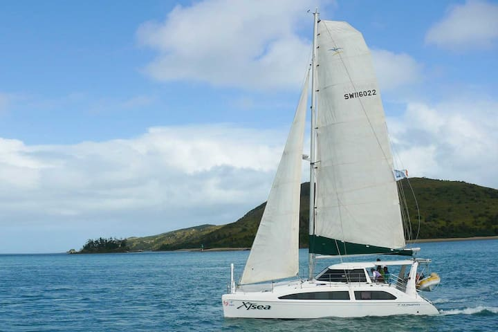 Sleep on a luxury yacht ON THE HARBOUR! with meals