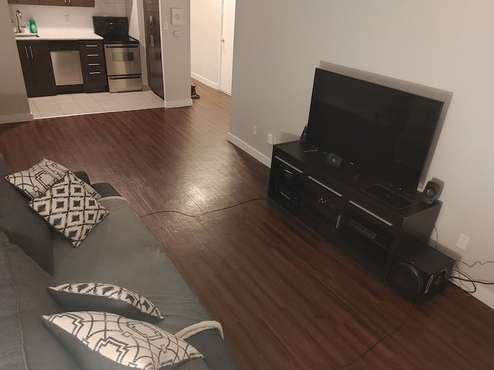 1 bedroom apartment located Downtown Hamilton.