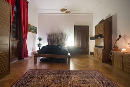 Zentrales herrschaftliches Zimmer - Apartament