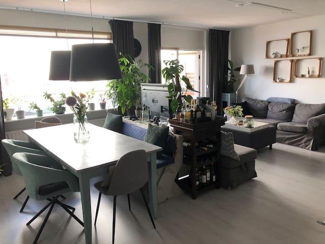 Spacious 2 bedroom apartment in Haarlem