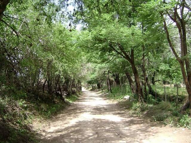Calle de acceso desde ruta 14.