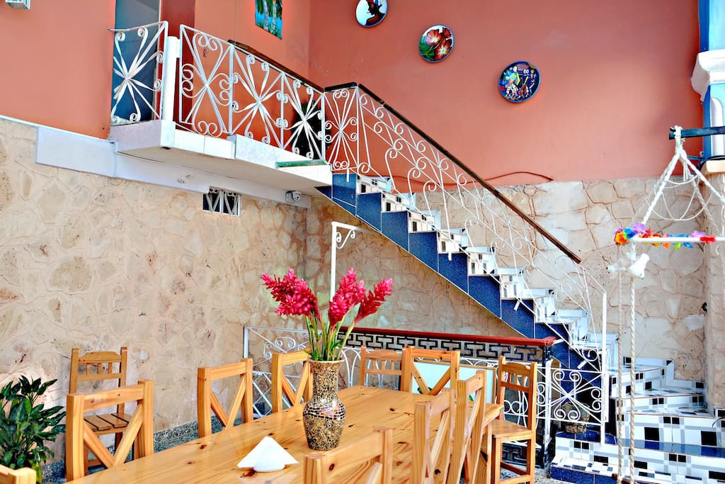 Beautiful Terrace, to have breakfast or share with other travelers